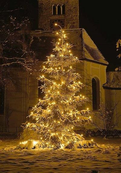 Frohe Und Gesegnete Weihnachten.Frohe Und Gesegnete Weihnachten Und Frieden Allen Menschen Auf Der
